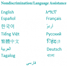 Language Assistance Banner & Link